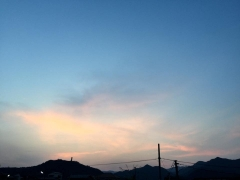 taeko5.jpg
