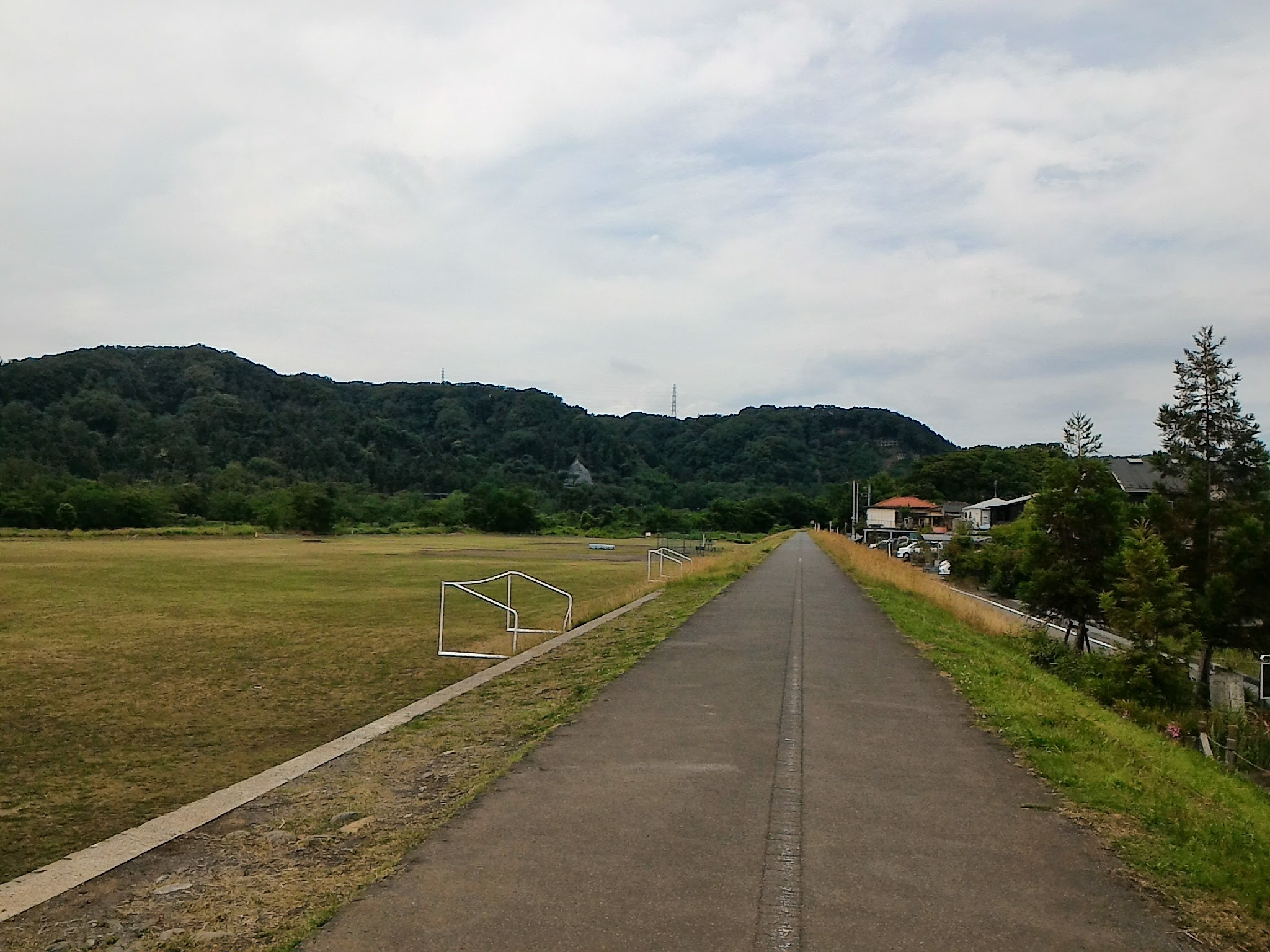 宮ノ下運動公園の土手2