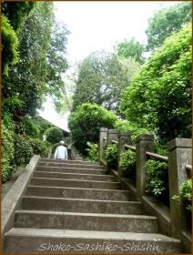 20170430  階段うえ  3   牡丹薬王院