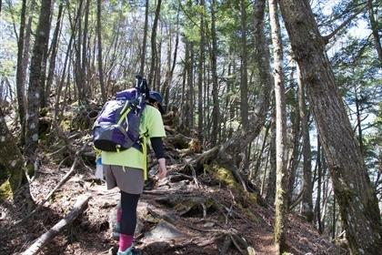 2017-4-28 両神山35 (1 - 1DSC_0052)_R