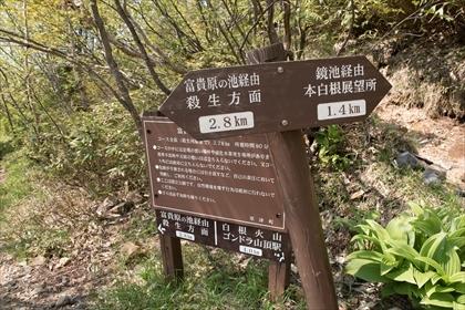 2017-6-20 草津白根山32 (1 - 1DSC_1570)_R