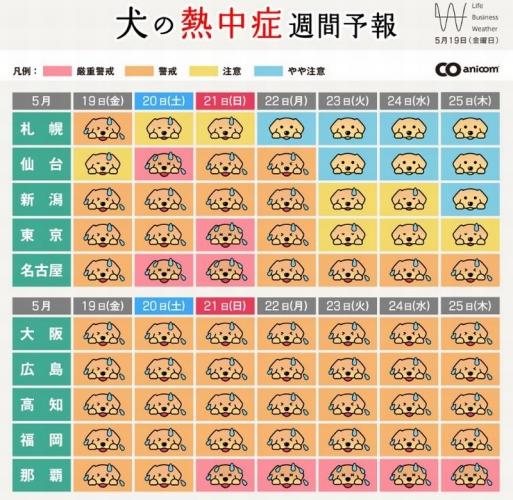 犬の熱中症予報