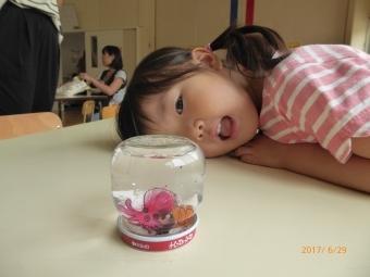 290629_youji_30.jpg