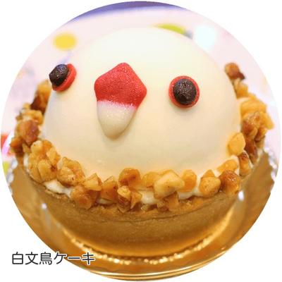 ③白文鳥ケーキ