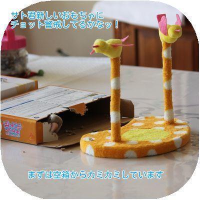 ①新しいおもちゃ