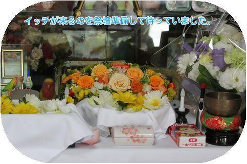①イッチの祭壇