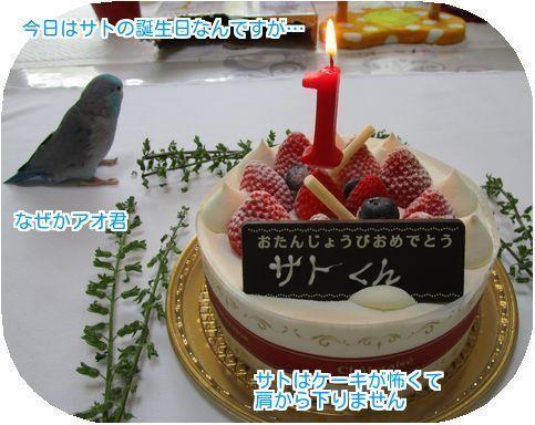 ①サト誕生日