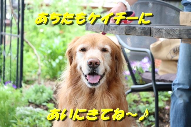 鴨池 法子さん誕生日 049
