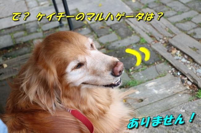 鴨池 法子さん誕生日 013