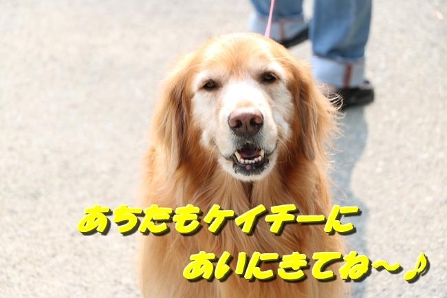 鴨池 法子さん誕生日 082