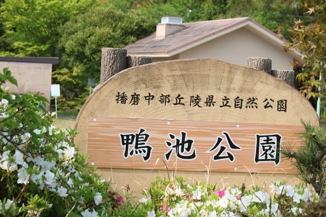 鴨池 法子さん誕生日 093