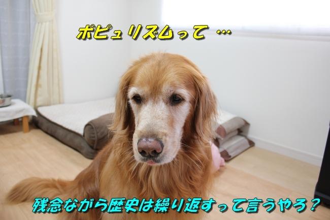 笑顔 009