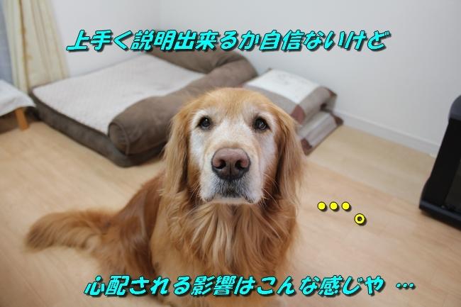 笑顔 010