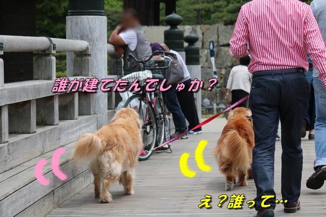 姫路城しょこら家と共に 030
