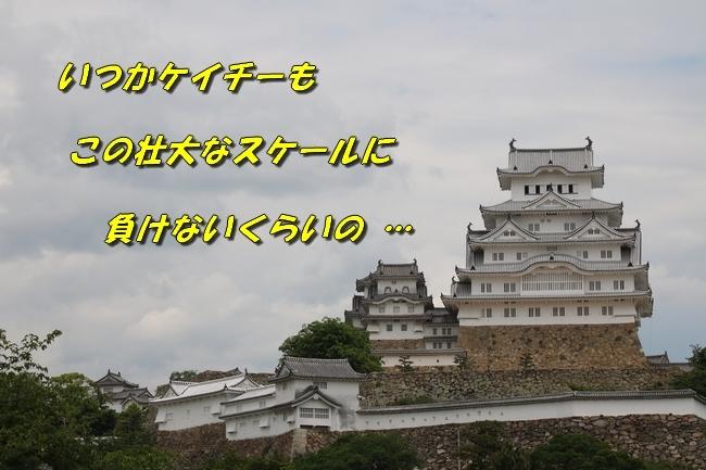 姫路城しょこら家と共に 041