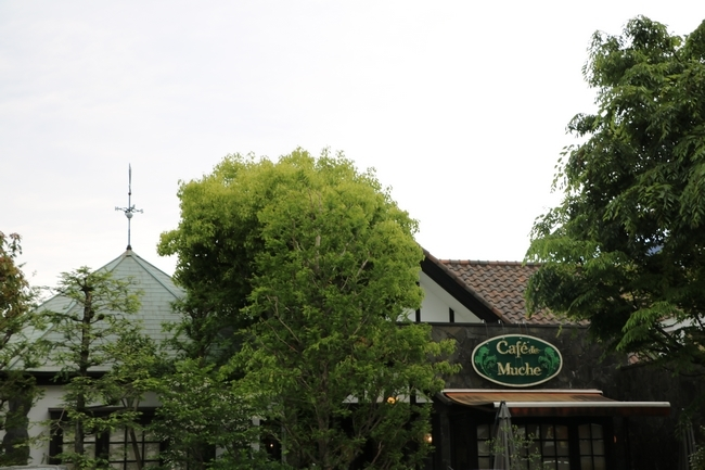 姫路城しょこら家と共に 139