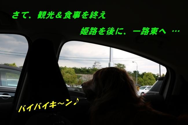 姫路城しょこら家と共に 110