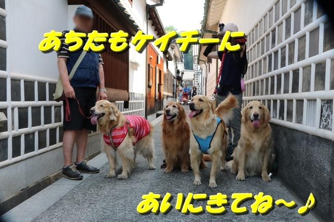 倉敷20170530 131