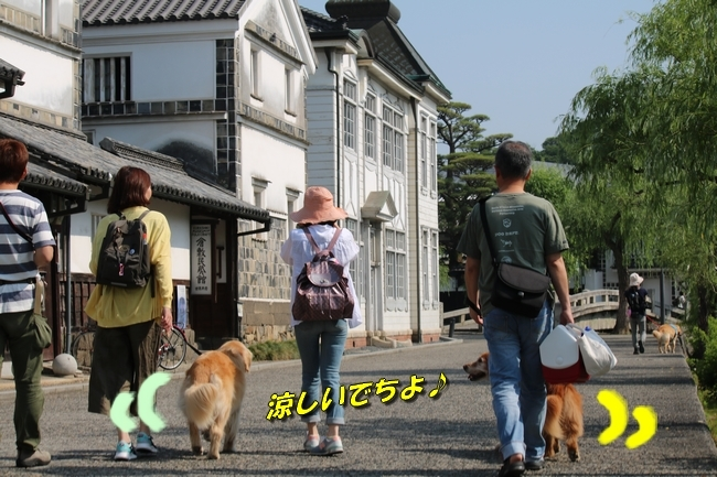 倉敷20170530 023
