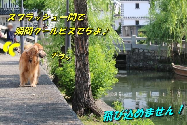 倉敷20170530 027