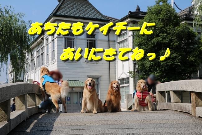 倉敷20170530 051