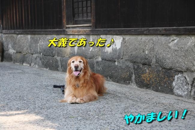 倉敷20170530 076