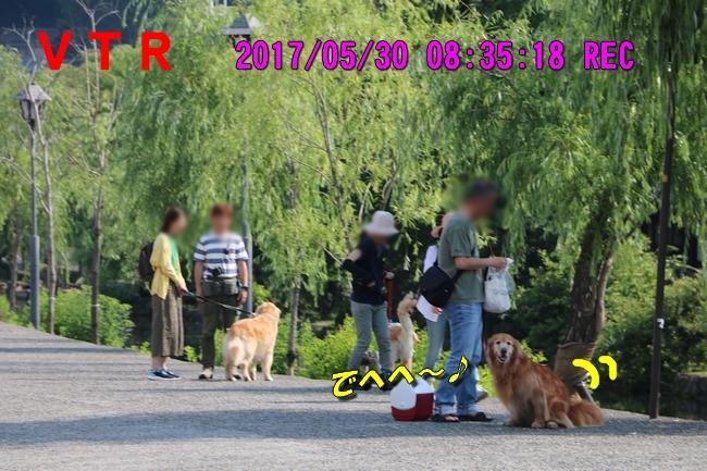 倉敷20170530 011