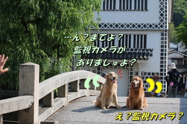 倉敷20170530 037