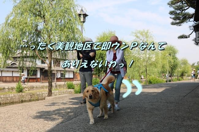 倉敷20170530 069