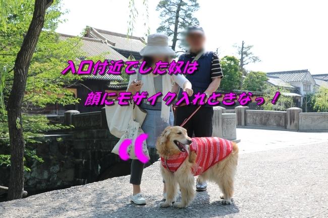 倉敷20170530 177