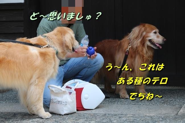 倉敷20170530 207