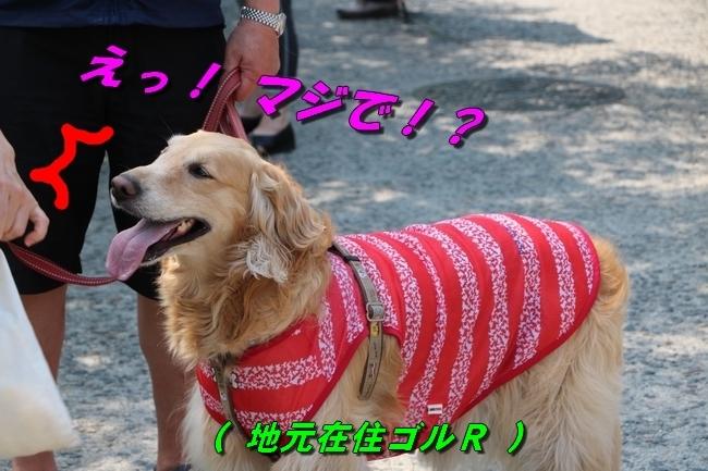 倉敷20170530 208