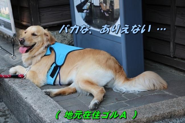 倉敷20170530 210