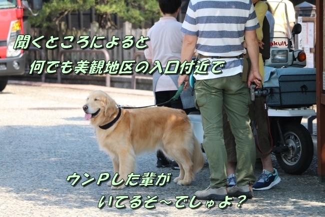 倉敷20170530 225