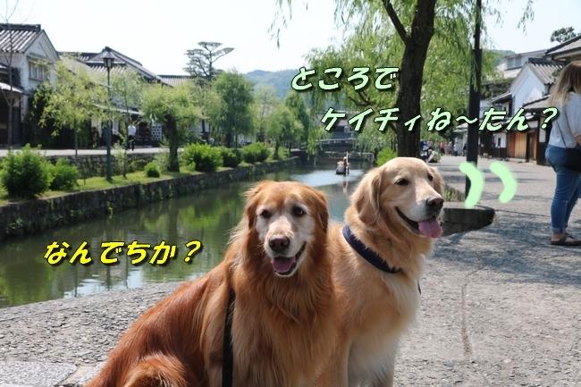 倉敷20170530 247