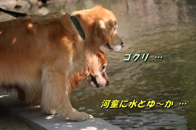 倉敷20170530 183