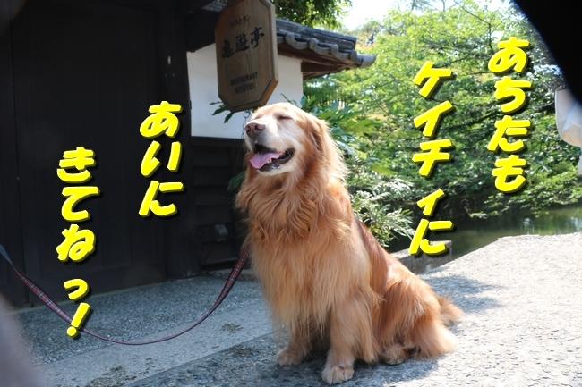 倉敷20170530 213