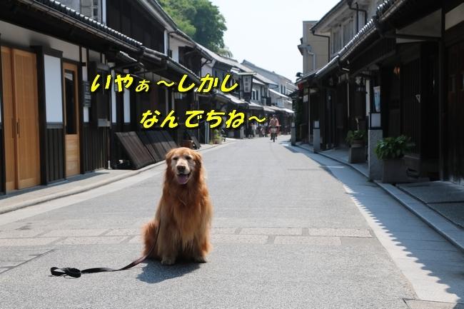 倉敷20170530 285