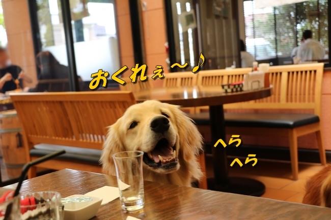 倉敷20170530 454