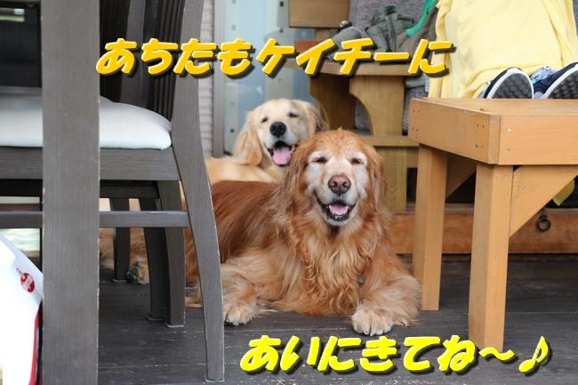 倉敷20170530 603