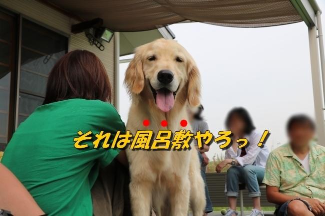 倉敷20170530 636