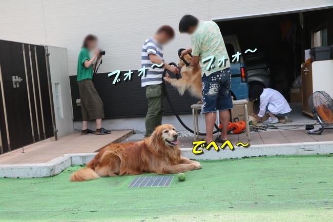 倉敷20170530 745
