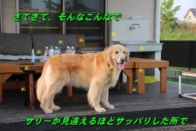 倉敷20170530 810