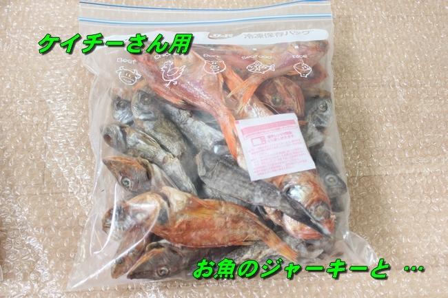 モモちゃん金目鯛 007