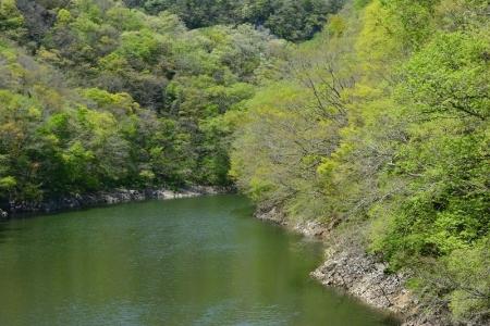 神龍湖の風景