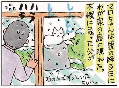 マロちゃん 1-2