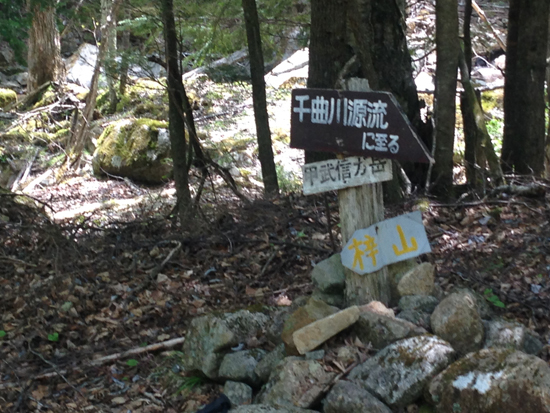 17053003甲武信ヶ岳
