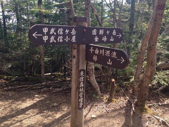 17053008甲武信ヶ岳