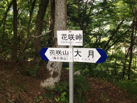 17060609花咲山