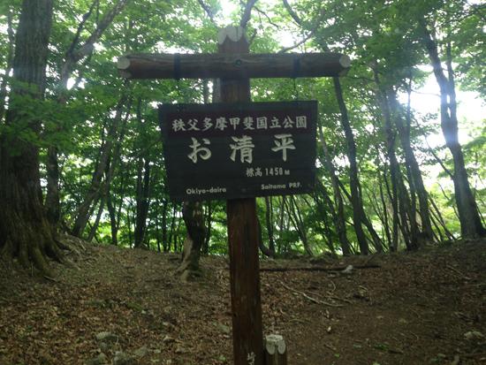17061106雲取山